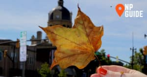 New Philadelphia, Ohio courthouse in background with yellow leaf over it held by hand